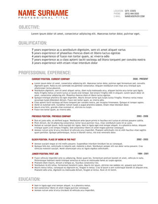 writing a professional resume format - Professional Resume Format